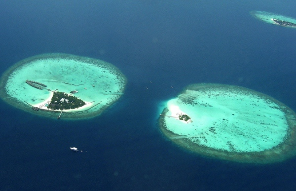 8Maldives