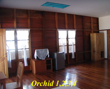 orchid-lounge