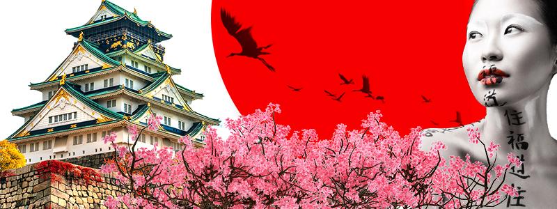 экскурсионный тур в токио