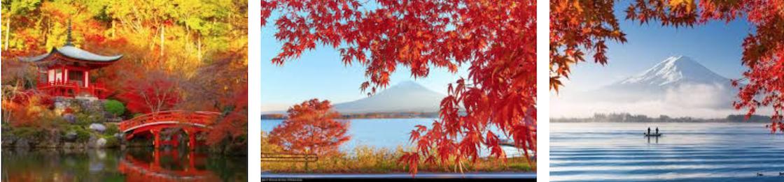 тур в японию осенью