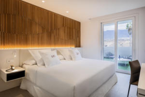 RH Corales Suites - Suite Deluxe 2 Bedrooms with Pool - 8
