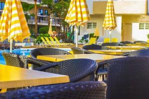 bar-piscina-primeconfort-california-001