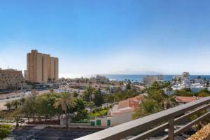 double-sea-view-hotel-OLE-tenerife-tropical